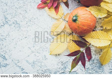 Bright Autumn Leaves And Pumpkins On Grey Background With Copy Space For Text. Beautiful Autumn Fram