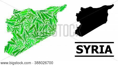 Drugs Mosaic And Usual Map Of Syria. Vector Map Of Syria Is Created With Scattered Inoculation Icons