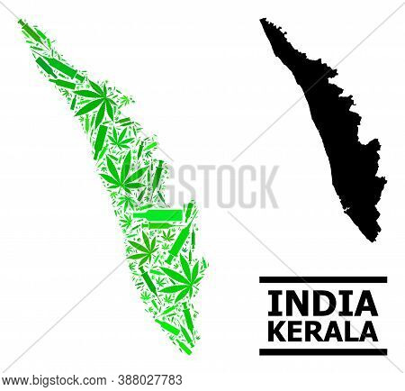 Drugs Mosaic And Solid Map Of Kerala State. Vector Map Of Kerala State Is Constructed With Scattered