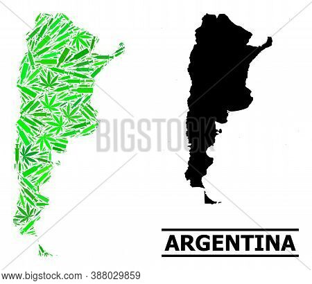 Drugs Mosaic And Usual Map Of Argentina. Vector Map Of Argentina Is Created From Random Inoculation