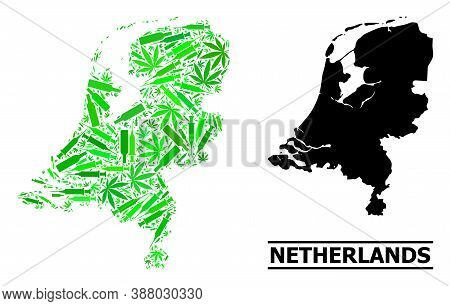 Drugs Mosaic And Solid Map Of Netherlands. Vector Map Of Netherlands Is Done With Random Vaccine Sym