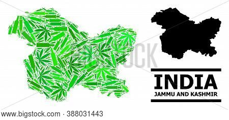 Drugs Mosaic And Solid Map Of Jammu And Kashmir State. Vector Map Of Jammu And Kashmir State Is Desi
