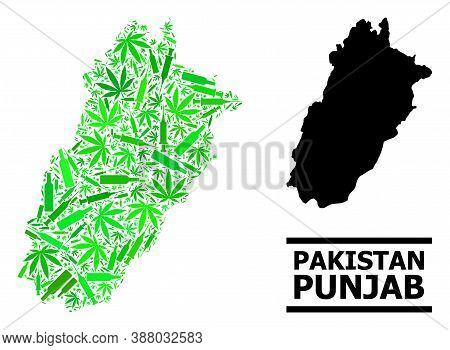 Drugs Mosaic And Solid Map Of Punjab Province. Vector Map Of Punjab Province Is Created From Randomi