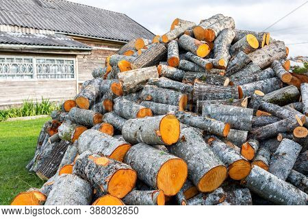 Chopped And Stacked Up Dry Firewood At The Countryside. Stock Pile Of Timber, Chopped Down Trees