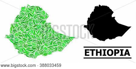 Drugs Mosaic And Solid Map Of Ethiopia. Vector Map Of Ethiopia Is Created With Randomized Injection