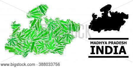 Drugs Mosaic And Usual Map Of Madhya Pradesh State. Vector Map Of Madhya Pradesh State Is Formed Wit