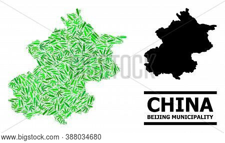 Addiction Mosaic And Solid Map Of Beijing Municipality. Vector Map Of Beijing Municipality Is Done W