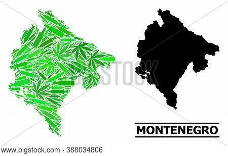 Addiction Mosaic And Usual Map Of Montenegro. Vector Map Of Montenegro Is Formed From Scattered Vacc