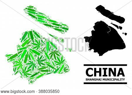 Addiction Mosaic And Solid Map Of Shanghai Municipality. Vector Map Of Shanghai Municipality Is Desi