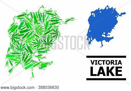 Drugs Mosaic And Solid Map Of Victoria Lake. Vector Map Of Victoria Lake Is Organized With Random Sy