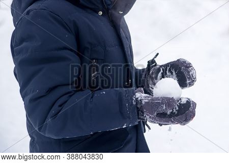 Person Holding Snowball. Close-up Of Cropped Hands Holding Snowball.