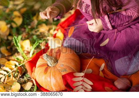 Cute Little Girl In Autumn Park With Orange Color Leaves And Yellow Pumpkin.