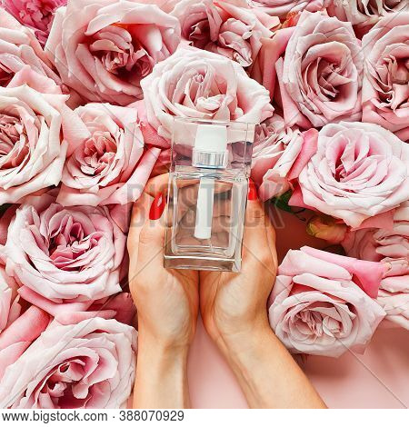 Caucasian Female Hands With Red Nails Hold Bottle Of Perfume And Roses On Pink Background. Eau De To