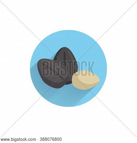 Ripe Sunflower Seed Colorful Flat Icon With Long Shadow. Sunflower Seed Flat Icon