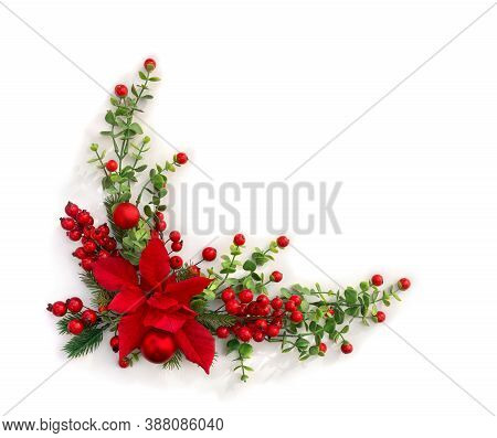 Christmas Decoration. Flower Of Red Poinsettia, Branch Christmas Tree, Red Berries On White Backgrou