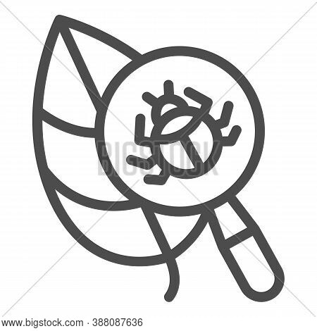 Beetle Under Magnifying Glass On Leaf Line Icon, Allergy Concept, Insect Under Magnifier Sign On Whi