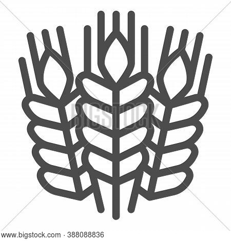Grain Ears Line Icon, Craft Beer Concept, Wheat Grains Sign On White Background, Bunches With Grains