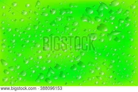 Realistic Green Background, Rectangular Surface. Transparent Droplets Range Of Liquid Lie On On Motl