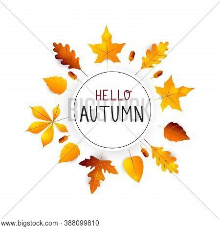 Hello Autumn. Autumn Hand Drawn Lettering Vector. Hello Autumn Background With Fall Leaves. Orange A