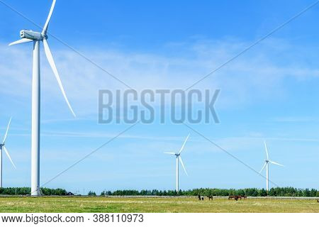 View Of Wind Turbines In The North Cape, Prince Edward Island, Canada