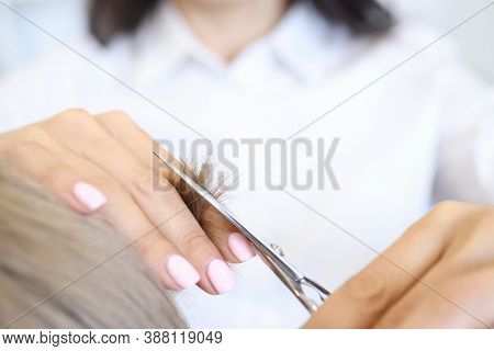 Strand Of Hair Close Up. Woman Hold Strand Of Hair With Her Hand And Cut With Scissors With Other Ha