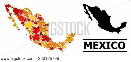 Mosaic Autumn Leaves And Solid Map Of Mexico. Vector Map Of Mexico Is Constructed Of Scattered Autum