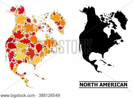 Mosaic Autumn Leaves And Usual Map Of North America. Vector Map Of North America Is Formed From Scat