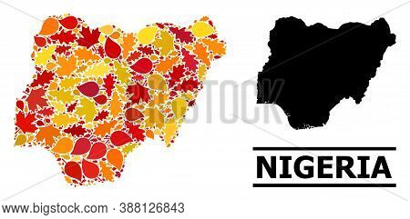 Mosaic Autumn Leaves And Solid Map Of Nigeria. Vector Map Of Nigeria Is Organized With Random Autumn