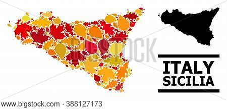 Mosaic Autumn Leaves And Usual Map Of Sicilia Island. Vector Map Of Sicilia Island Is Formed Of Rand