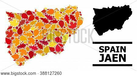 Mosaic Autumn Leaves And Solid Map Of Jaen Spanish Province. Vector Map Of Jaen Spanish Province Is