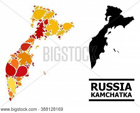 Mosaic Autumn Leaves And Usual Map Of Kamchatka Peninsula. Vector Map Of Kamchatka Peninsula Is Crea