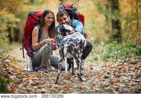 Couples hiking together with a dog; Active lifestyle concept