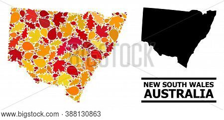 Mosaic Autumn Leaves And Usual Map Of New South Wales. Vector Map Of New South Wales Is Created Of R