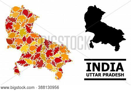 Mosaic Autumn Leaves And Solid Map Of Uttar Pradesh State. Vector Map Of Uttar Pradesh State Is Comp