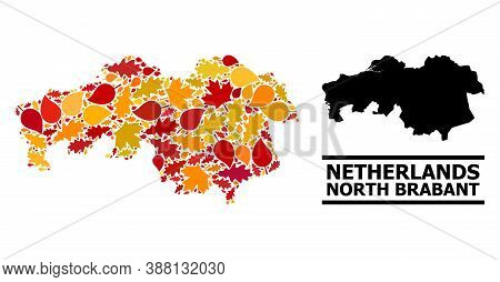 Mosaic Autumn Leaves And Usual Map Of North Brabant Province. Vector Map Of North Brabant Province I