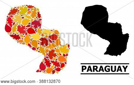Mosaic Autumn Leaves And Usual Map Of Paraguay. Vector Map Of Paraguay Is Organized With Randomized