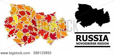 Mosaic Autumn Leaves And Solid Map Of Novosibirsk Region. Vector Map Of Novosibirsk Region Is Formed