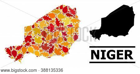 Mosaic Autumn Leaves And Solid Map Of Niger. Vector Map Of Niger Is Shaped From Scattered Autumn Map