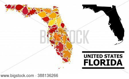 Mosaic Autumn Leaves And Solid Map Of Florida State. Vector Map Of Florida State Is Created With Ran