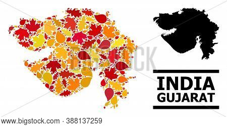 Mosaic Autumn Leaves And Usual Map Of Gujarat State. Vector Map Of Gujarat State Is Organized Of Ran