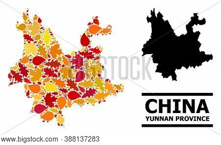 Mosaic Autumn Leaves And Solid Map Of Yunnan Province. Vector Map Of Yunnan Province Is Constructed
