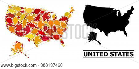 Mosaic Autumn Leaves And Solid Map Of Usa And Alaska. Vector Map Of Usa And Alaska Is Composed Of Ra