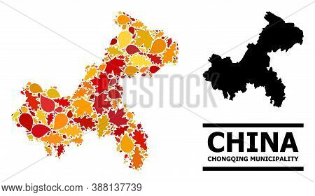 Mosaic Autumn Leaves And Usual Map Of Chongqing Municipality. Vector Map Of Chongqing Municipality I