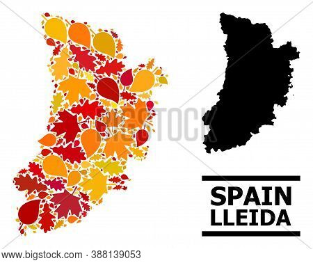 Mosaic Autumn Leaves And Solid Map Of Lleida Province. Vector Map Of Lleida Province Is Designed Fro