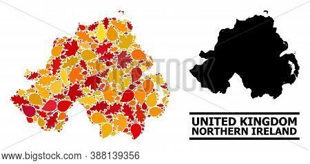 Mosaic Autumn Leaves And Usual Map Of Northern Ireland. Vector Map Of Northern Ireland Is Composed F