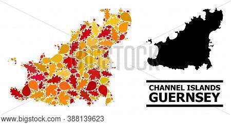Mosaic Autumn Leaves And Usual Map Of Guernsey Island. Vector Map Of Guernsey Island Is Composed Fro