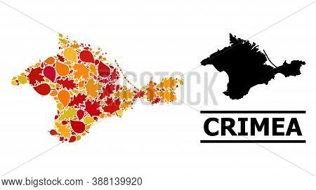 Mosaic Autumn Leaves And Solid Map Of Crimea. Vector Map Of Crimea Is Composed With Scattered Autumn