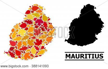 Mosaic Autumn Leaves And Solid Map Of Mauritius Island. Vector Map Of Mauritius Island Is Constructe