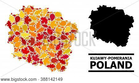 Mosaic Autumn Leaves And Usual Map Of Kujawy-pomerania Province. Vector Map Of Kujawy-pomerania Prov