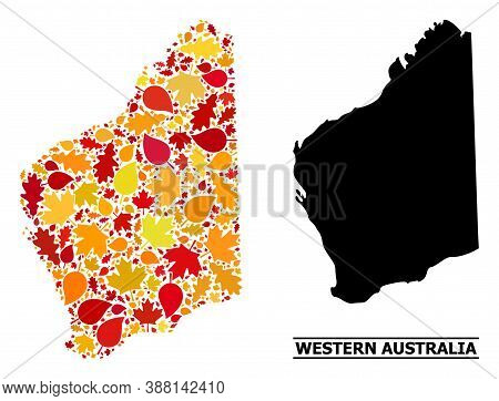 Mosaic Autumn Leaves And Solid Map Of Western Australia. Vector Map Of Western Australia Is Composed